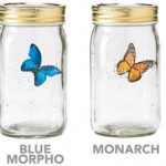 The Electronic Butterfly In A Jar Realistically Magical 1