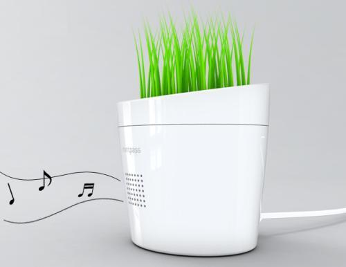 flower pot music