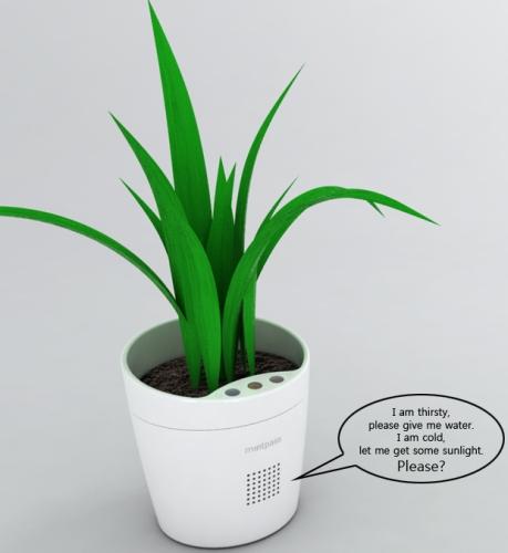 flower pot talking