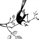 little birdis laptop sticker2.jpg