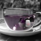 Duo Tea Infuser