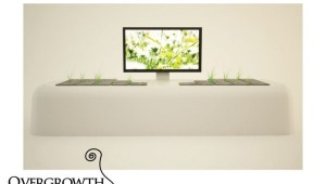 overgrowth tv console1