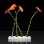 Adaptation Vase