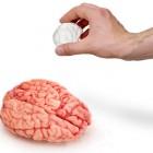 brain_salt_and_pepper_shakers2