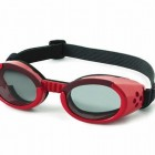canine-goggles2