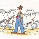 funniest Thanksgiving cartoons 2